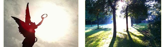 Sunshine Bilder 4
