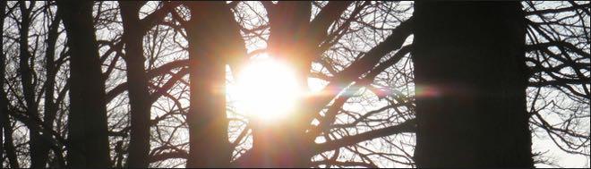 Sunshine Bilder 6